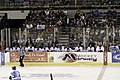 Ice Dogs bench (431123854).jpg