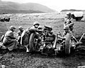 Iceland, Sanskeid Range. 37mm sub-caliber mounted on a 75mm field howitzer, 19th and 21st Field Artillery Regiment.jpg
