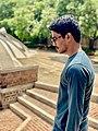 Idupulapati Mahesh (UserIM3847).jpg