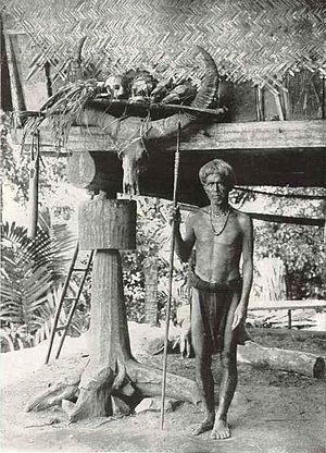 Ifugao headhunter