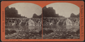 Indian Falls, from Robert N. Dennis collection of stereoscopic views 3.png