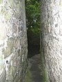 Inside Peg Washington's Lane, Graiguenamanagh, Co. Kilkenny - geograph.org.uk - 213439.jpg