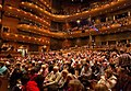 Inside the Donald Gordon Theatre, WMC..jpg