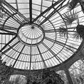 Interieur, palmenkas, detail - 20000633 - RCE.jpg