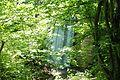 Jablanik - Zapadna Srbija - Izvore reke Jablanice - Vodopad.jpg