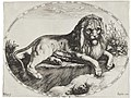 Jacques de Gheyn II - Great Lion.jpg