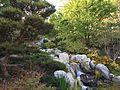 Japanese Friendship Garden (Balboa Park, San Diego) 12 2016-05-14.jpg