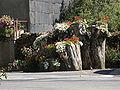 Jardinière de Fraisse sur Agout.jpg