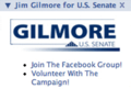 Jim Gilmore 2008 senate facebook1.png