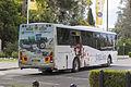 Junee Buses (1705 MO) Express bodied Volvo B7RLE on Baylis Street, Wagga Wagga (1).jpg