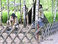 Jurapark Baltow, Poland (www.juraparkbaltow.pl) - (Bałtów, Polska) - panoramio (54).jpg