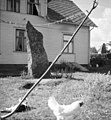 Kalleberga, Blekinge, Sweden (11982672656).jpg