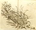 Kapa-tsjakka 11-1 Rheede 1692.png