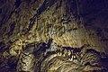 Kateřinská jeskyně 08(js).jpg