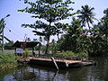 Keralaback (69).JPG
