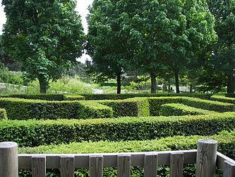 Keukenhof maze 3.jpg