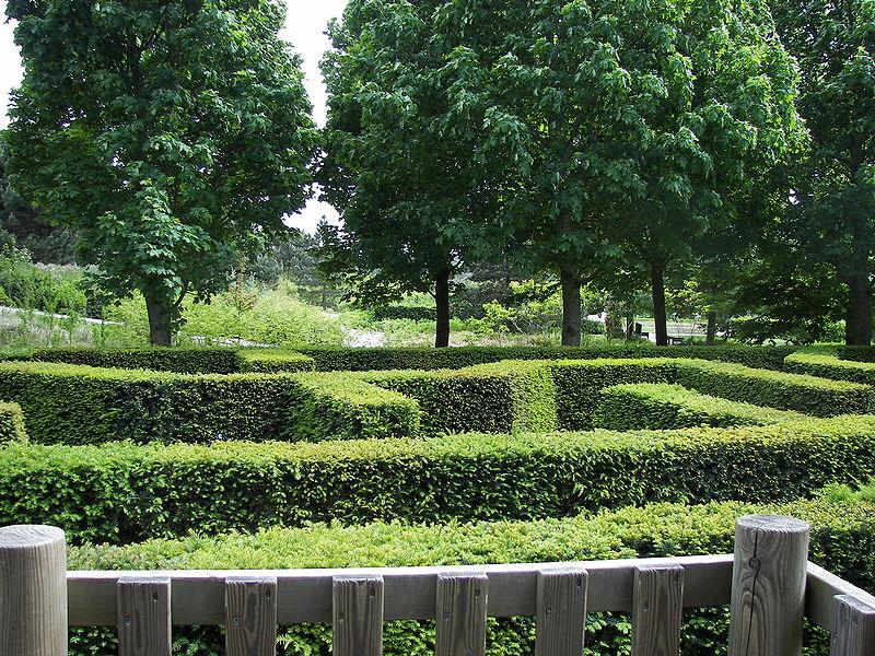 File:Keukenhof maze 3.jpg