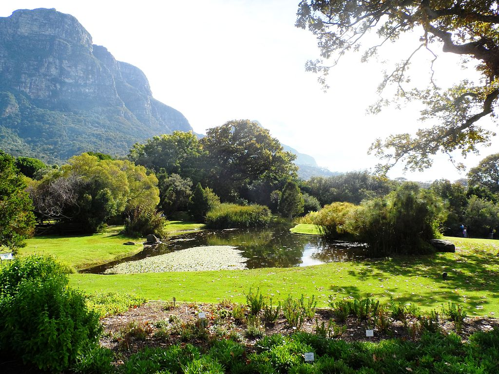 Image result for Kirstenbosch Gardens