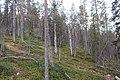Kittilä, Finland - panoramio (27).jpg