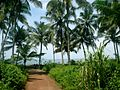 Kizhunna beach 3.jpg