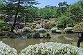 Kogetsu-pond in Senshu Park 20180520b.jpg
