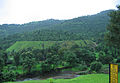 Konkan Railway - views from train on a Monsoon (28).JPG