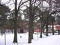 Konstantin Pätsi Vabaõhukool - panoramio.jpg