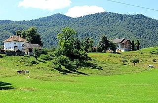 Kot pri Ribnici Place in Lower Carniola, Slovenia