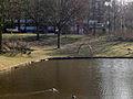 Kruisvaarderspark (6).JPG