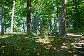 Kunstwerk im Wald bei der Haydnstraße Sindelfingen 01.jpg