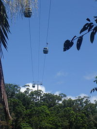 Skyrail Rainforest Cableway over the rainforest.