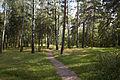 Kuzminki park 19.08.2012 3.jpg