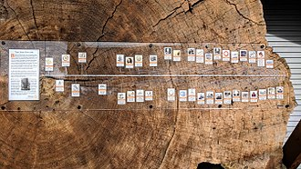 "La Conner, Washington - ""The Old Fir Log"" display on First Street includes this timeline of historic events."