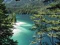 Lago di Tovel (agosto 2009) - panoramio.jpg