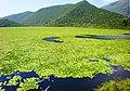 Lake Kalodiki, Thesprotia. Photo Harry Gouvas.jpg