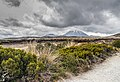 Landscape in Tongariro National Park 19.jpg