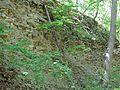 Landschaftsschutzgebiet Gestorfer Lößhügel - Steinbruch (8).JPG