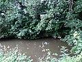 Landschaftsschutzgebiet Warmenau-Ufer LSG OS 00019 Datei 14.jpg