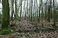 Landschap De Stroopers te Kemzeke - 372081 - onroerenderfgoed.jpg