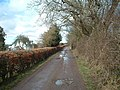 Lane by West Belmont Cottage - geograph.org.uk - 148666.jpg
