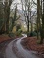 Lane to Alcombe - geograph.org.uk - 1627931.jpg