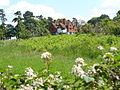 Lascombe - geograph.org.uk - 453242.jpg