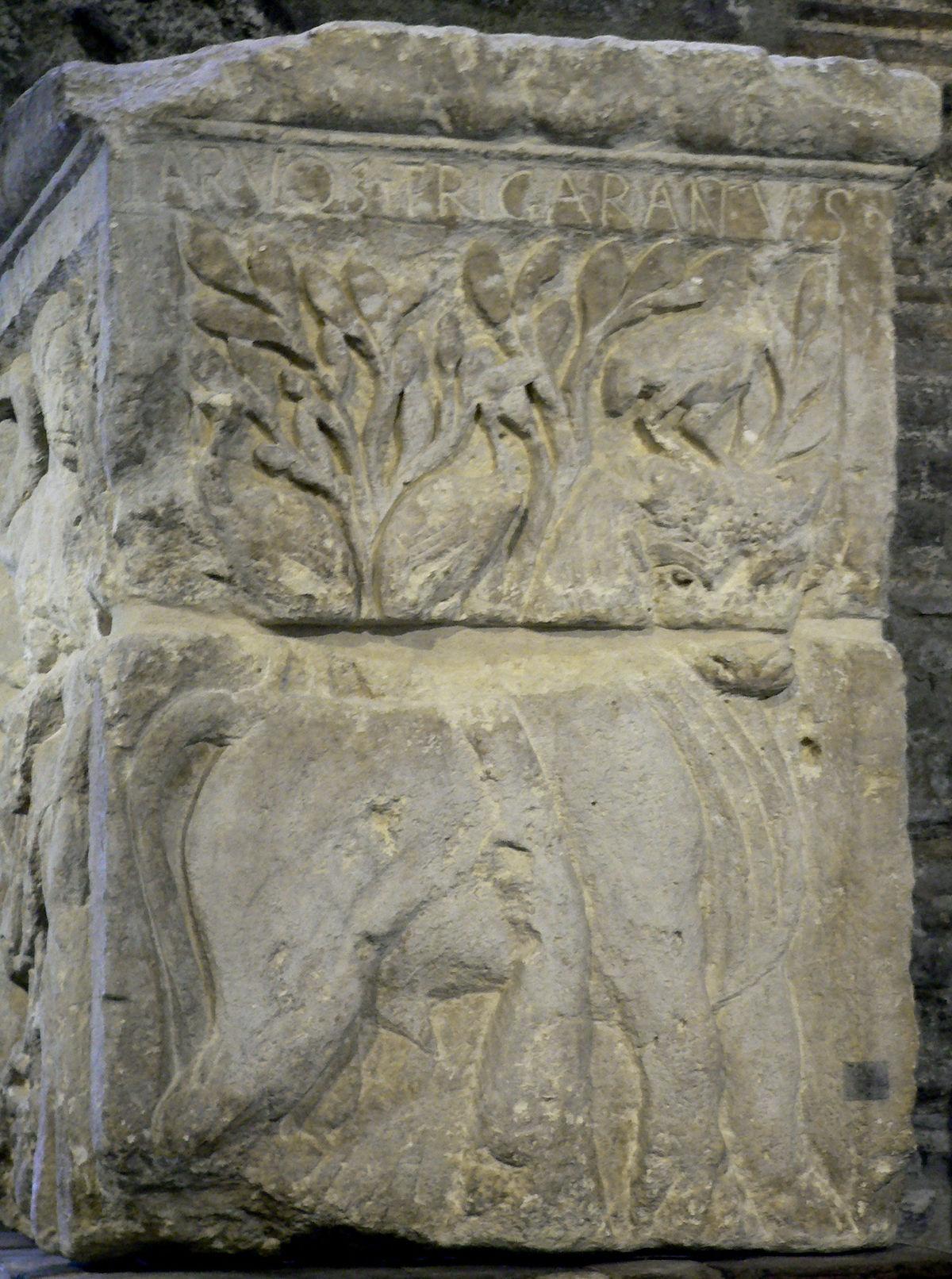 Tarvos Trigaranus Wikipedia