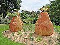 Le jardin des plantes (Le Voyage, Nantes) (9224139856).jpg