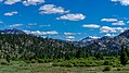 Leavitt Meadow-West Walker River (20617458391).jpg