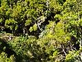 Levada 25 Fontes, Madeira, Portugal, June-July 2011 - panoramio (37).jpg