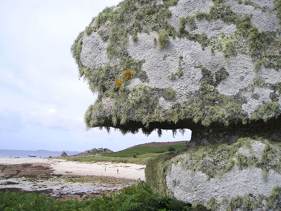 Lichen rock.jpeg
