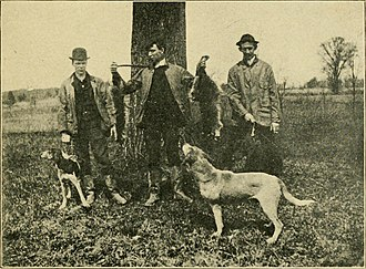 Coon hunting - Image: Life in old Virginia (1907) (14783367032)