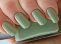 Light green nail polish.jpg