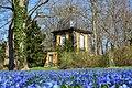 Lindener Berggarten Scilla 2021Pavillon von unten.jpg